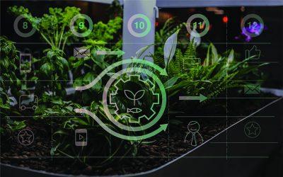 Smartgrow Solutions – hyvinvointia kasvien ja kalojen välityksellä